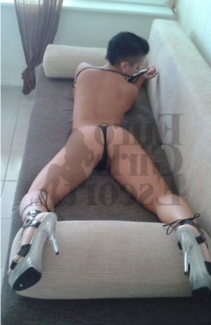 Widade incall escort in Chesterfield